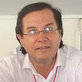 Alberto Ramos Garbiras, ARG Consultores,