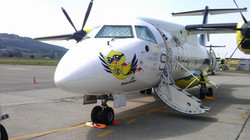 Skywork Dornier 328 Thermomatten