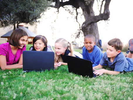 Why do schools do blended learning?