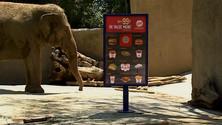 "Burger king ""Zoo"""