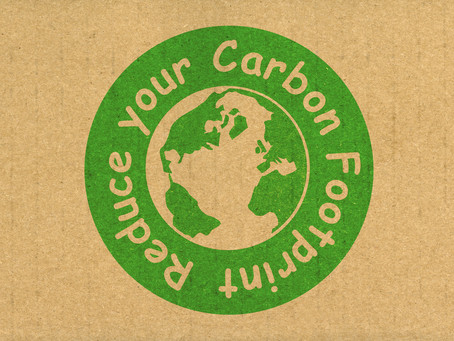 How You Can Lower Your Carbon Emissions