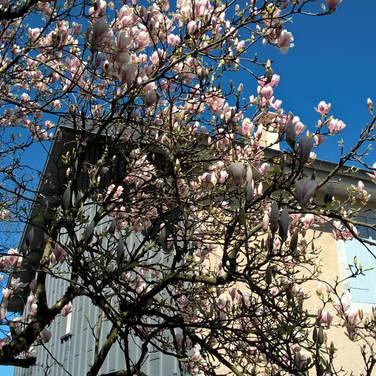 Le Gîte au printemps