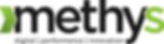 Methys Logo.png