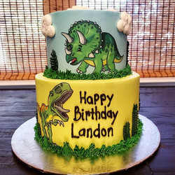 Happy Birthday Landon!