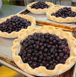 Making blueberry pies