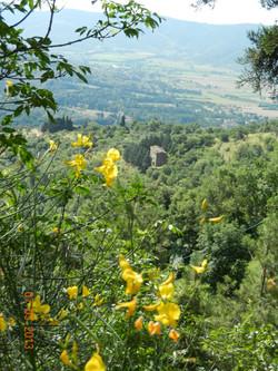 View outside of Cortona