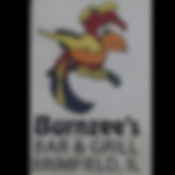 Burnzees logo.png