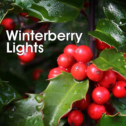 Winterberry Lights Fidget Sniffer