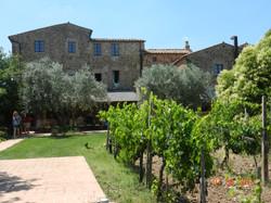 Winery near Montalcino, (Tuscany)