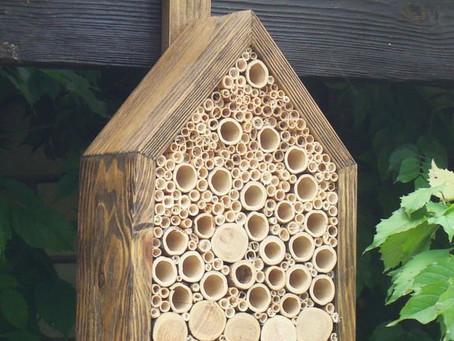 Bee Box Class