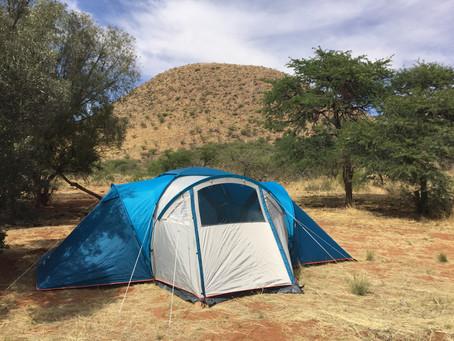 Fieldwork at Tswalu Kalahari Reserve (South Africa)