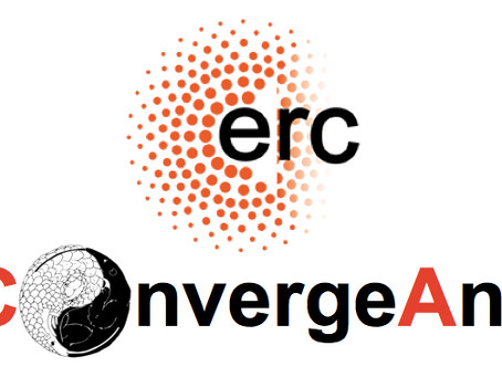 The ConvergeAnt project officially started!