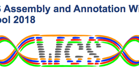 Rémi returned from the WGS Assembly and Annotation Winter School 2018