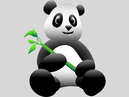 SiPanda's PANDA Parser vs P4 for Network Datapath Programming Part 2:Why PANDA-C Is the Right Model