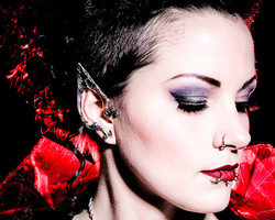 Body Piercing and  Jewelry by The Red Pa