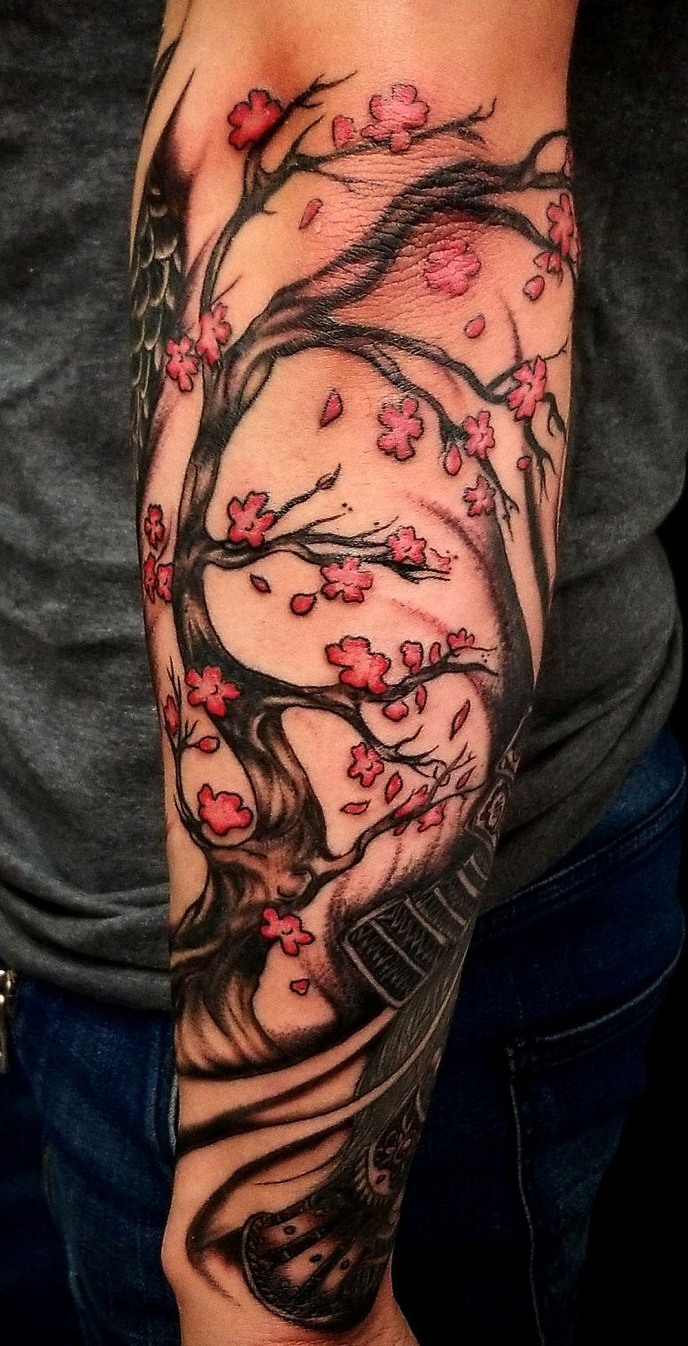 Cherry Blsooms Tree by Jorge at The Red