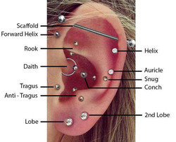 Ear Piercing in Queens NY Since  1997 Th