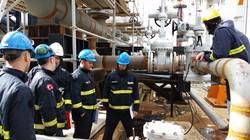 Training DBB Plug valve