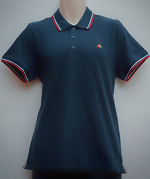 Aston averill adamo navy polo 1.jpg