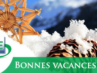 Le SFE vous souhaite d'excellentes fêtes de fins d'année pour vous et vos proches !