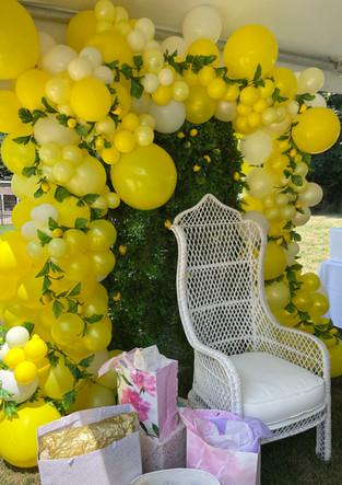 Organic Balloon Arch for Sicilian Themed Bridal Shower Near Beacon New York.jpeg