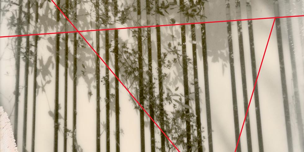 Altoona Virtual Lecture Series: Manipulation