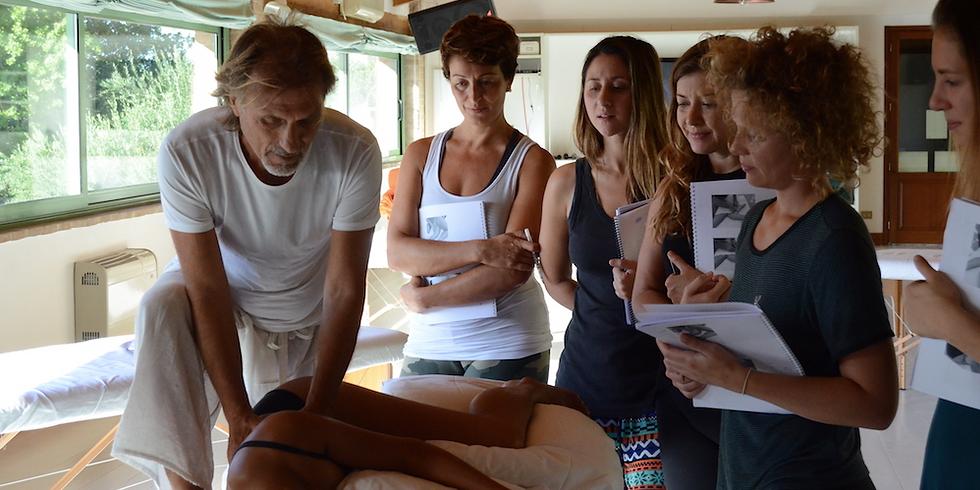 Alchemy of touch - Essential Skills Massage Training