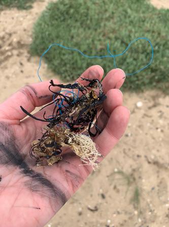 Beach plastic!