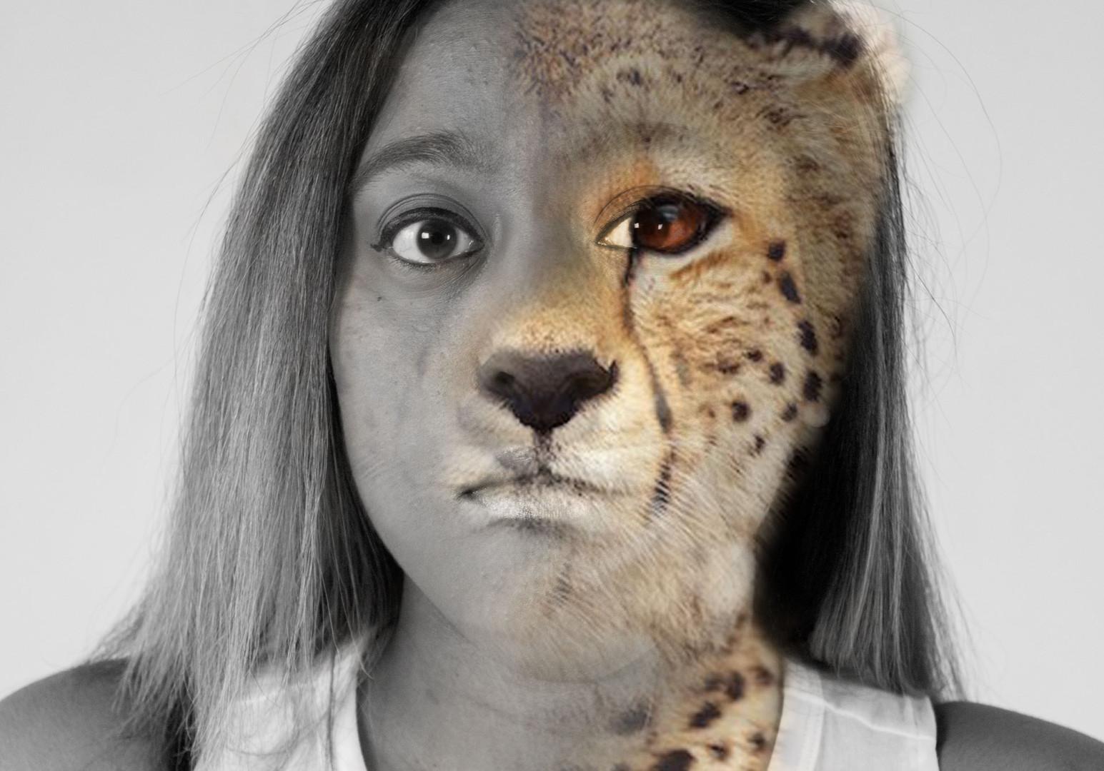 Kam- Cheetah
