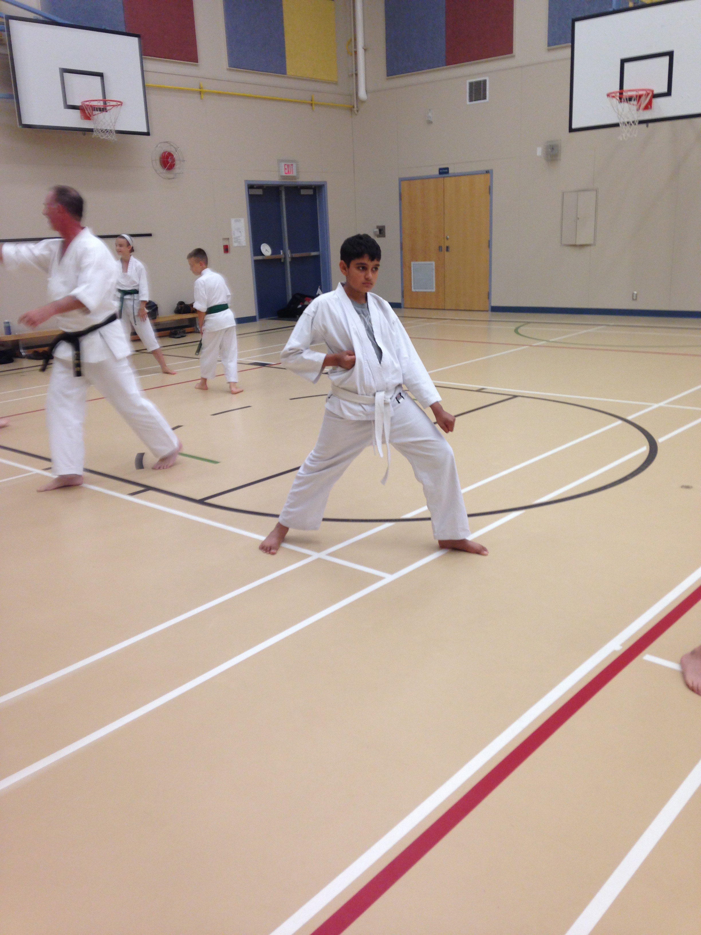 North Langley Dojo June 2015