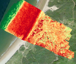 Vegetation mapping by drone