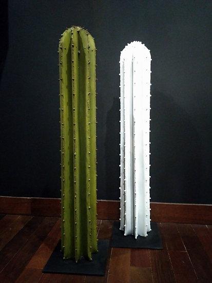 Columnum 100
