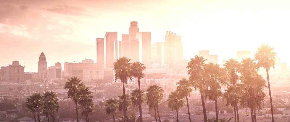 Los Angeles Downtown City View