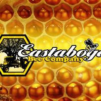 eastabogabeecompany2_logo-ts1457256566.j