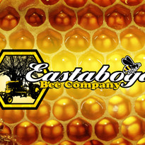 eastabogabeecompany2_logo.jpg