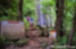 Manoa Falls Park Round Trip