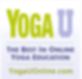 Yoga U Online - Online Yoga Courses with Baxter Bell
