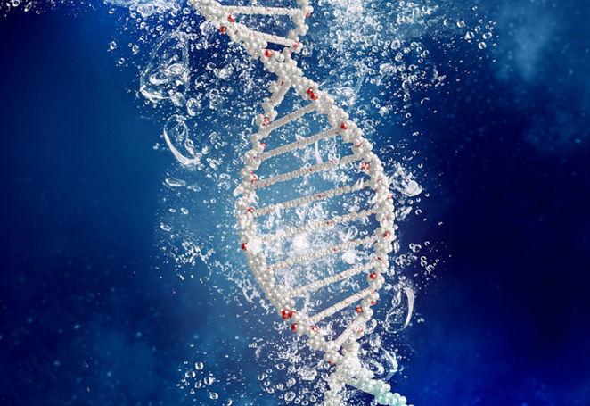 AlisaAri_ThetaHealing_Basic-DNA.jpg