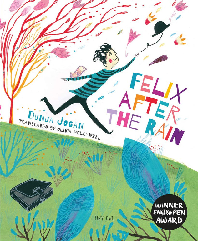 Felix After the Rain (Hope in a Scary World) by Dunja Jogan and Olivia Hellewell