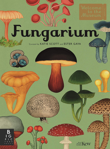 Fungarium (Welcome To The Museum)