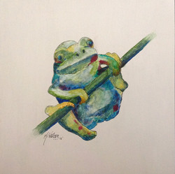 Frog 161