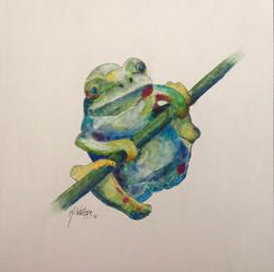 Frog 161