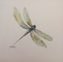 Dragonfly 162