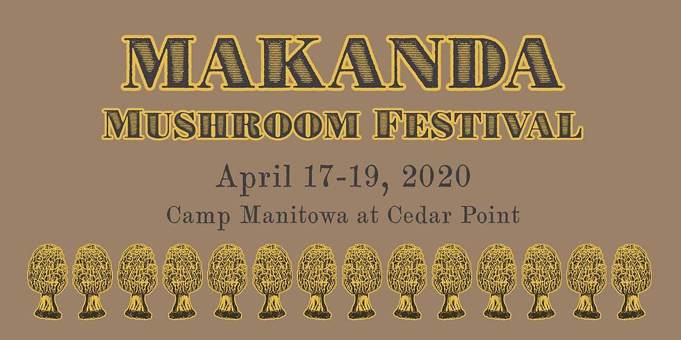 Makanda Mushroom Fest - Taylor Steele Solo