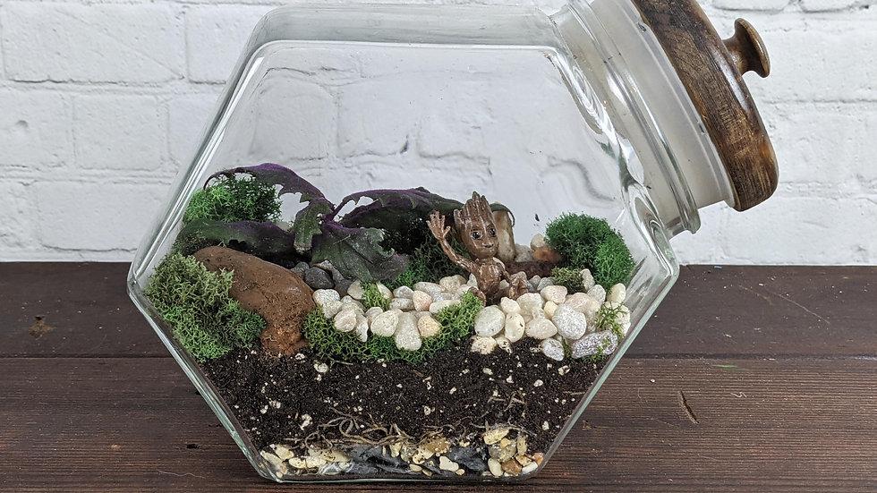 Baby Groot Living Terrarium