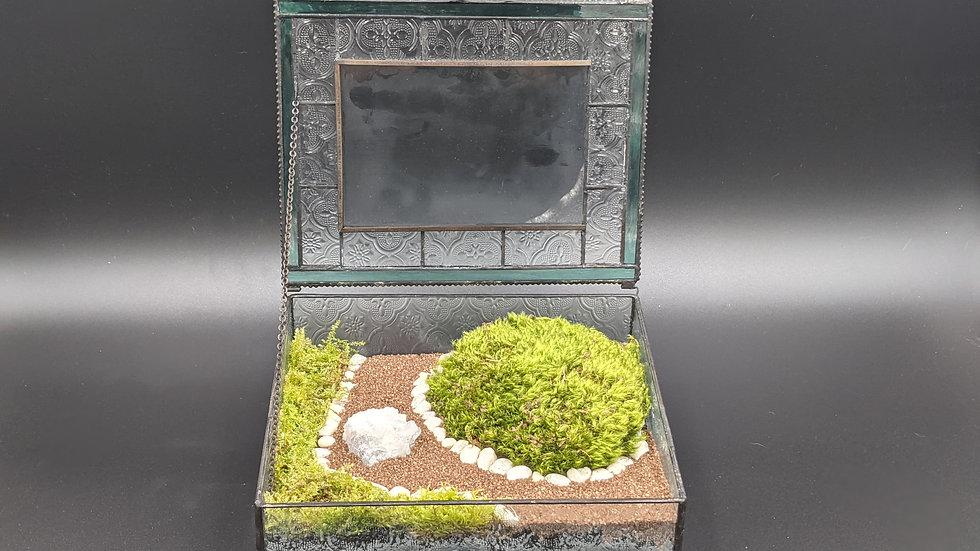 Stained Glass Box Moss Terrarium