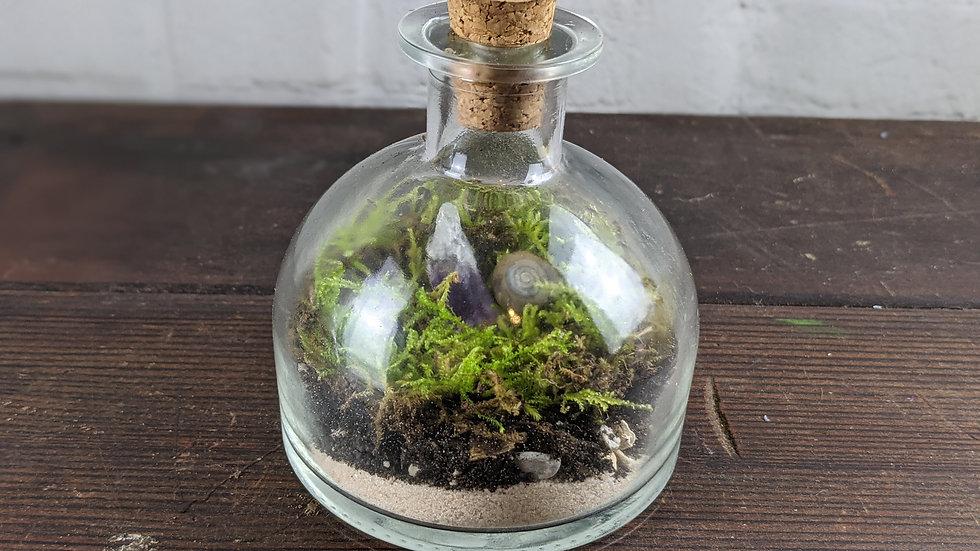 Amethyst Quartz Geode  and Snail Shell Moss Terrarium