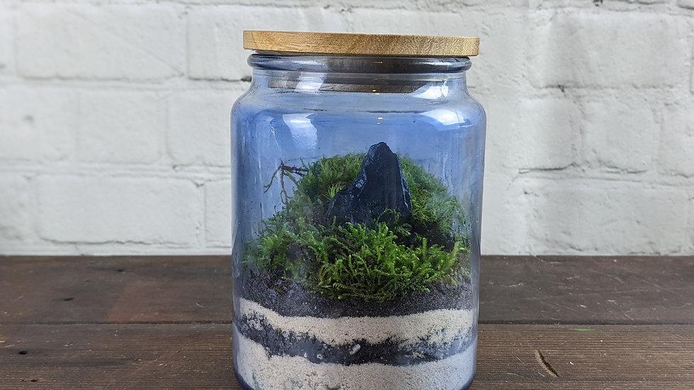 Blue Glass Moss Terrarium