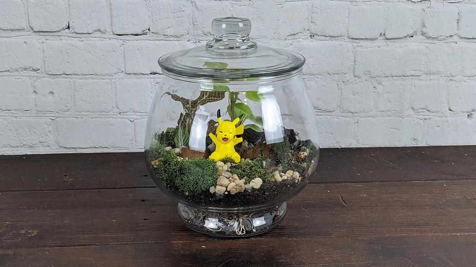 Pikachu Living Terrarium