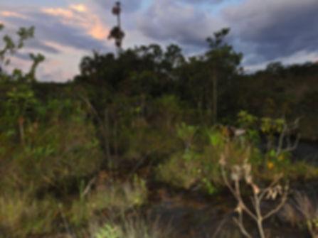 Circuito_das_Águas,_Campo_Verde_MT,_col